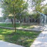 1- Canile Minicipale Ferrara